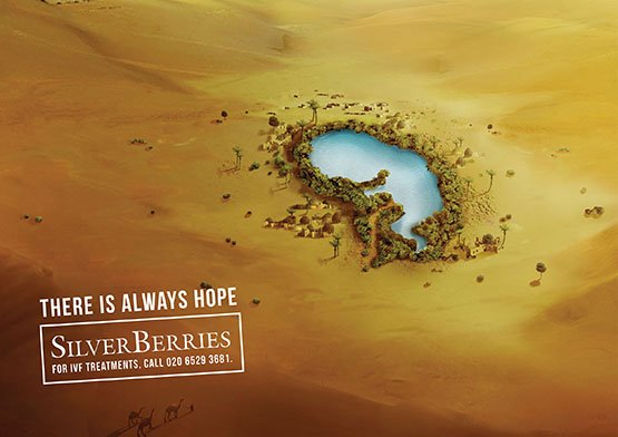 project-silver-berries-1