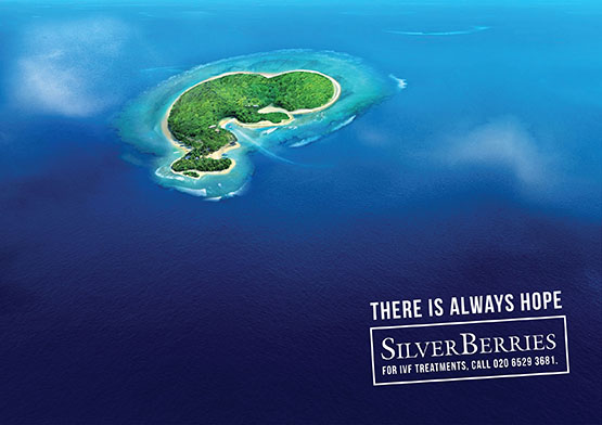 project-silver-berries-2